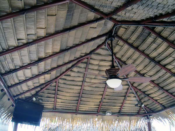 Tiki-hut-thatch-underside-dark-color